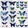 34494 ubrousek 33x33 fly away