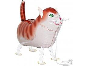 Chodící balónek kočka