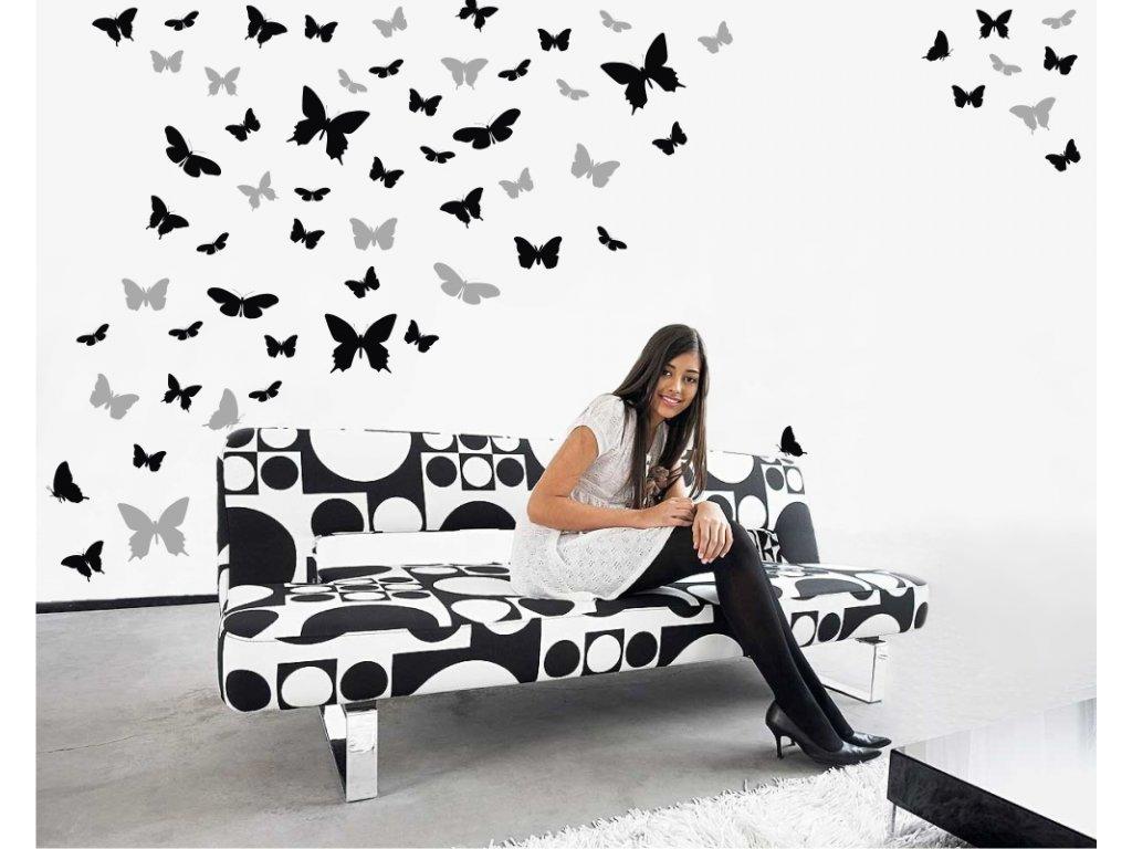 Samolepky na zeď - Motýlí ráj