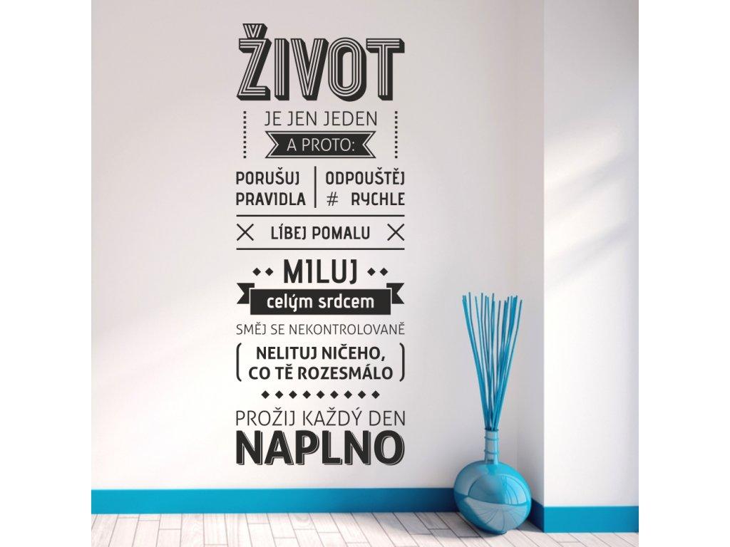 Samolepka na zeď český citát s nápisem život