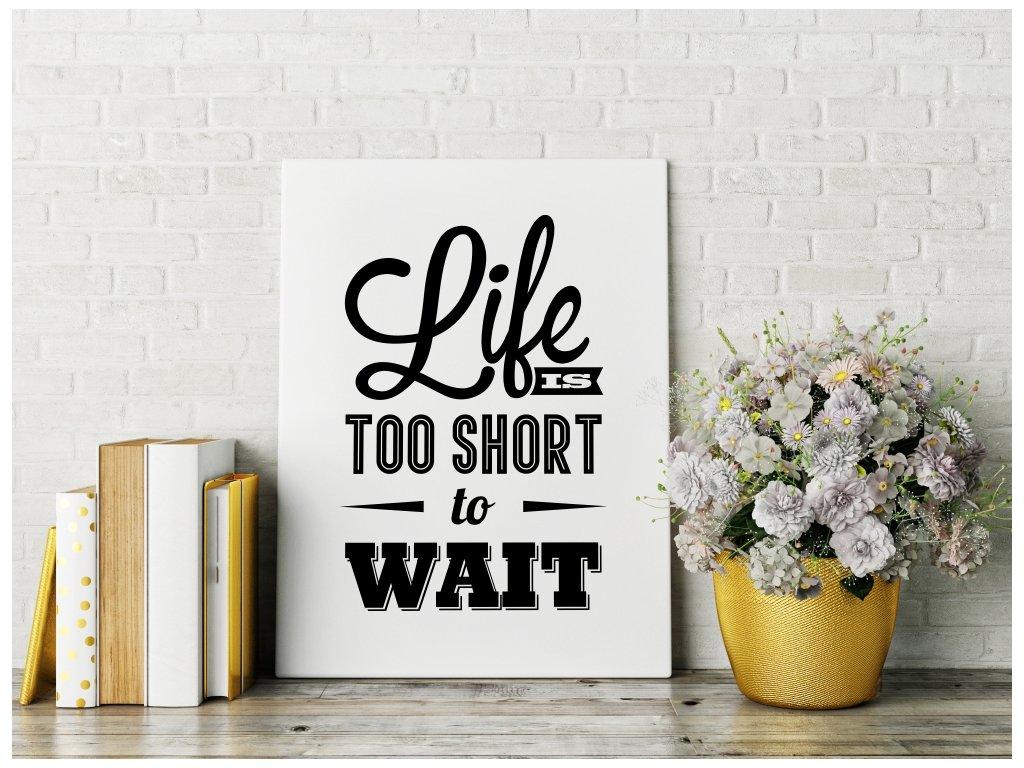 Obraz na plátně na zeď - Life is too short to wait