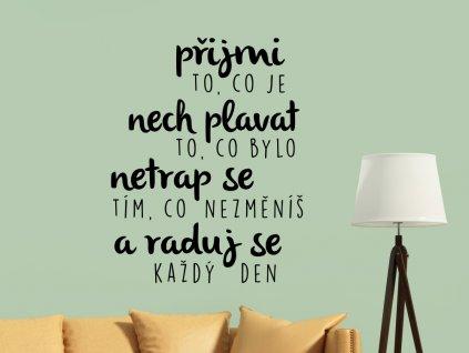 Samolepky na zeď český nápis citát na zeď Přijmi a raduj se každý den