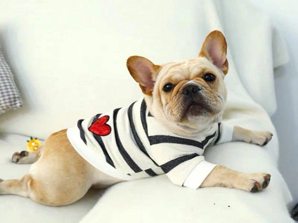 Tričko pro psa LOVE