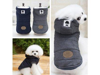 dizajnova bunda pro psa
