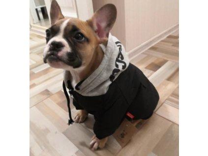 Zimní teplá bunda s kapucí pro psa