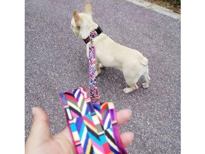 Barevný obojek pro psa - Retro 2
