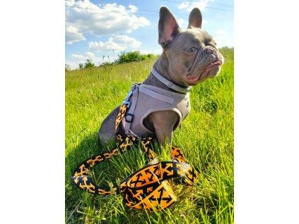 Barevné nylonové vodítko pro psa - Oranžové