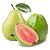 hruška guave