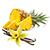 ananas - vanilka