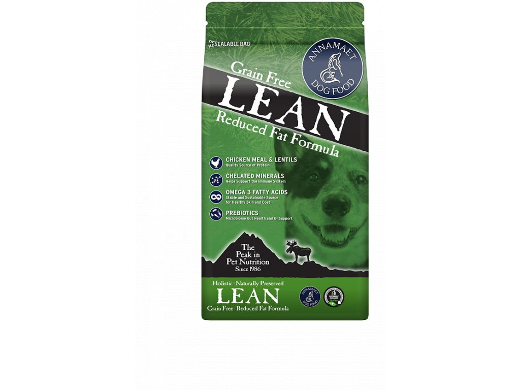 big lean
