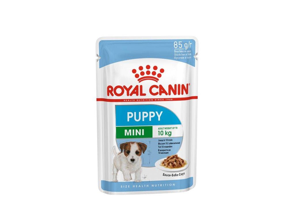 RC Puppy Mini