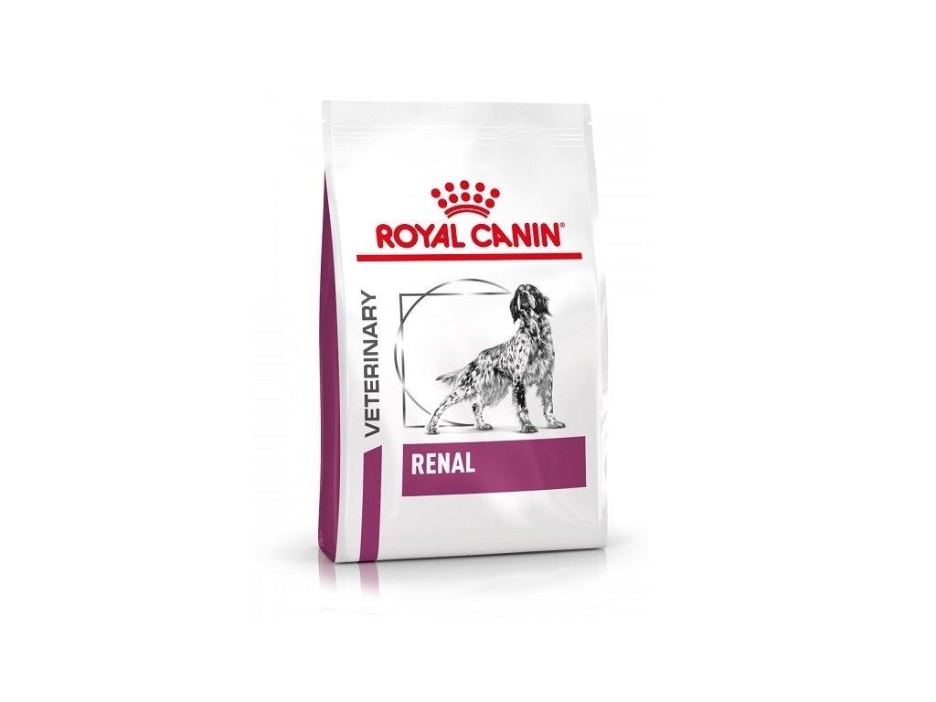 renal dog