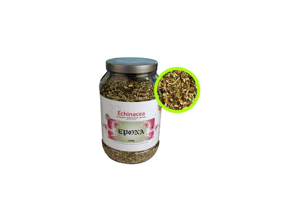 epona echinacea oxy