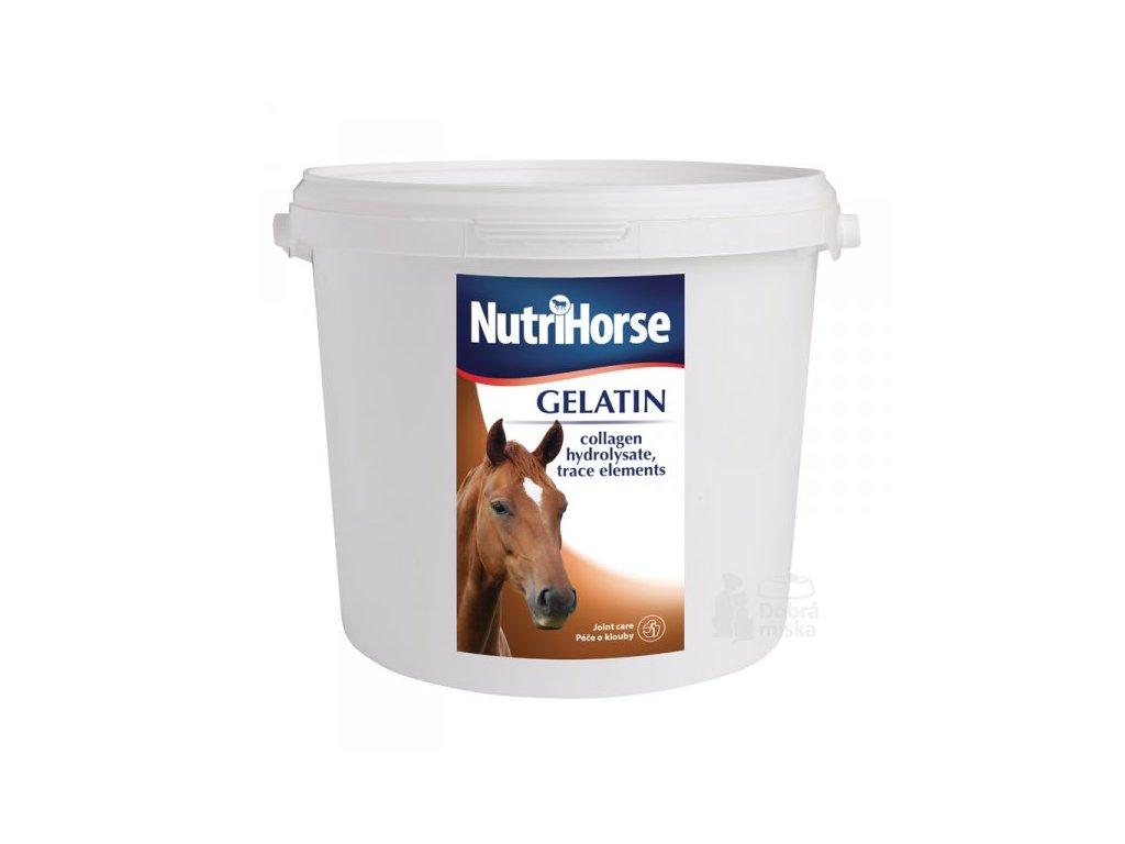 Nutri Horse Gelatin