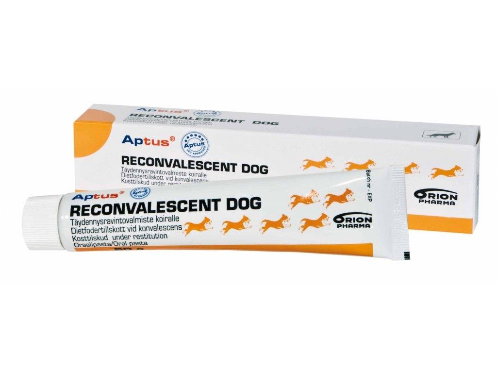 Aptus Reconvalescent Dog 100g pasta
