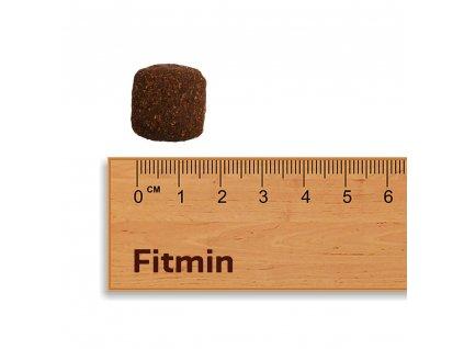 Akční Fitmin For Life Dog Junior Large 15kg