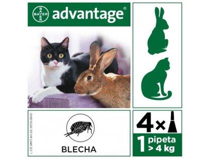 Advantage 80 10% pro kočky nad 4kg 4x0,8ml