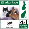 Advantage 80 10% pro kočky nad 4kg 4x0,8ml  exspirace 31.7.2019