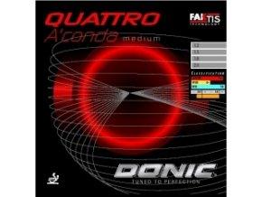 QUATTRO ACONDA medium