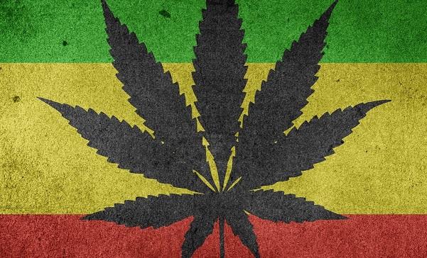 Legalizace aneb kde všude je marihuana legální v roce 2019