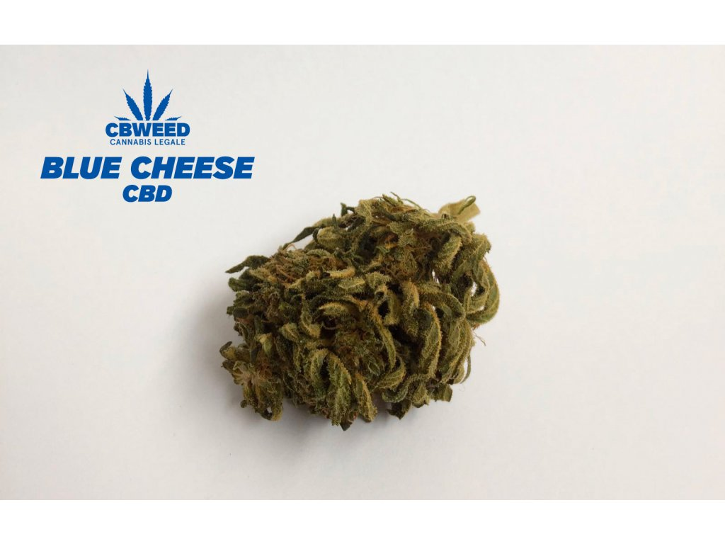 cbd konopi 2g marihuana