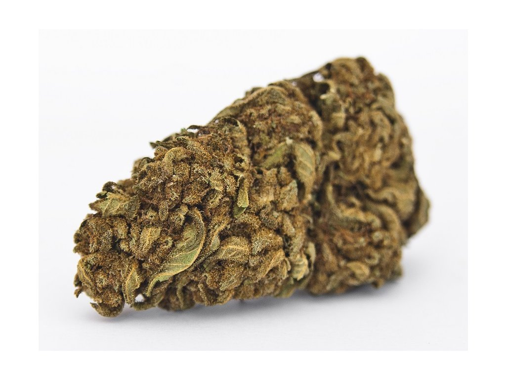 cbd konopi marihuana cheese