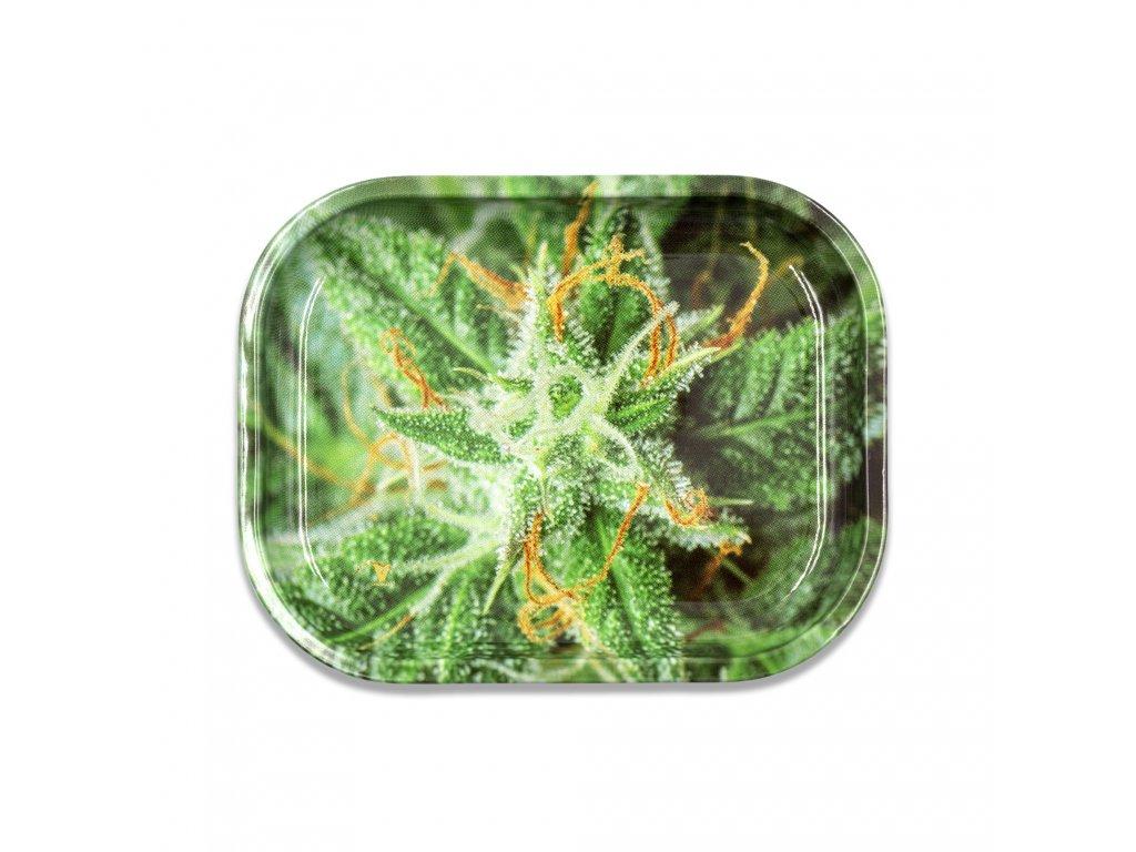 podlozka konopi ak47 marihuana