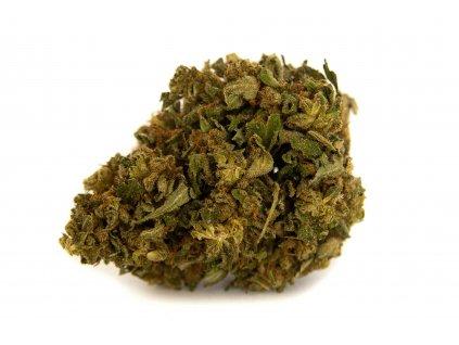 CBD konopí - Lemon Cheese - Weedshop