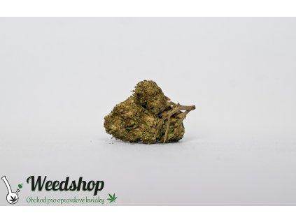 harlequin cbd konopi marihuana