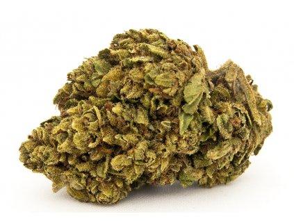 amnesia cbd konopi marihuana