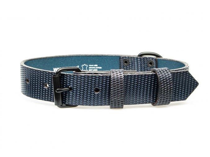 OBV.100131 MOD Kožený obojek Diamant modrá 30 mm (2)