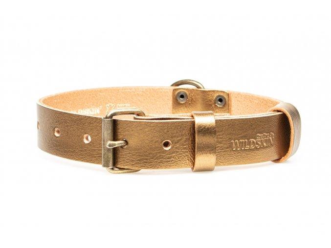 OBV.100135 GOLD Kožený obojek zlatý 30 mm (2)