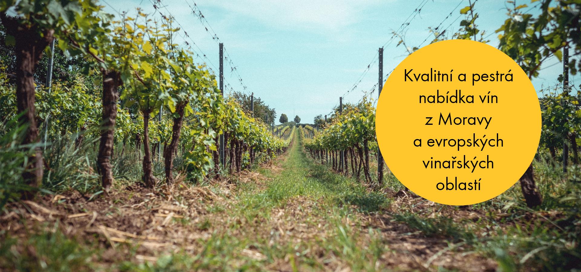 Kvalitní a pestrá nabídka vín z Moravy a evropských vinařských oblastí