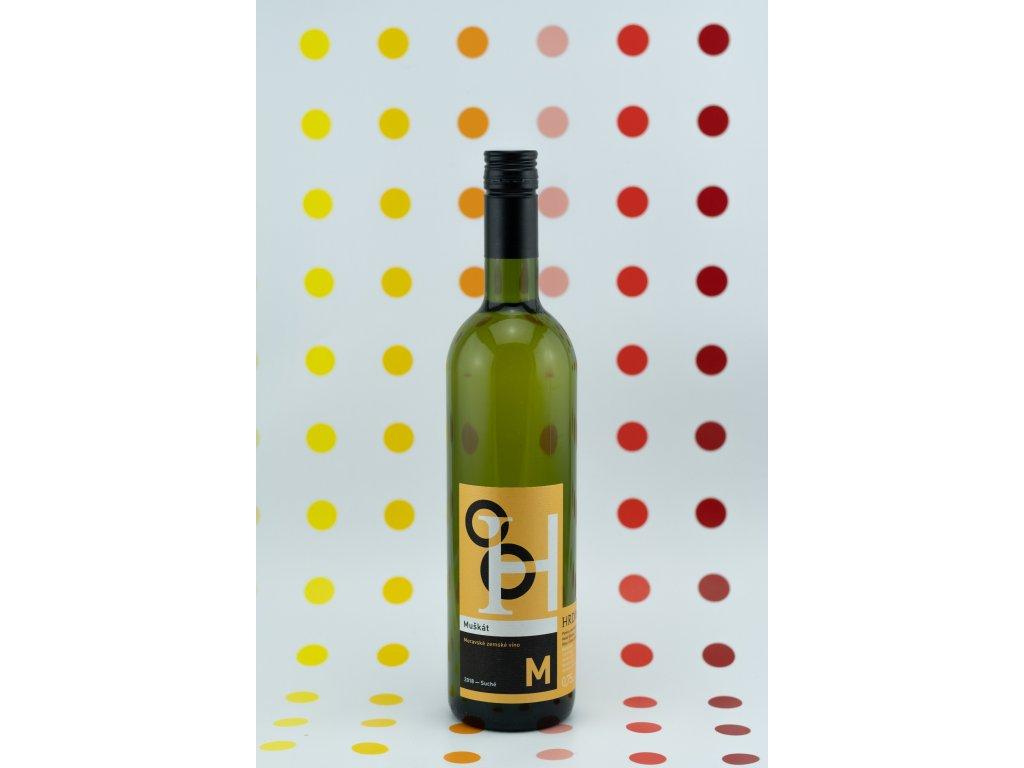 winaři v2 12