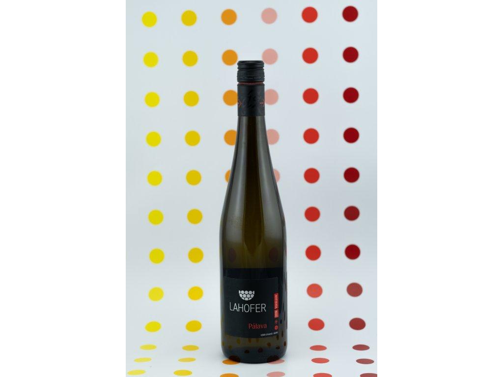 winaři v2 42