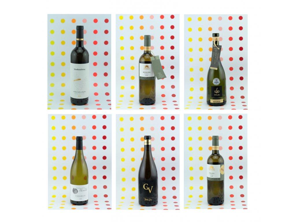 Prémiová bílá vína