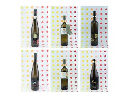 projekt vinařsvtí roku...vítězové
