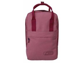 dee bag mini.jpg