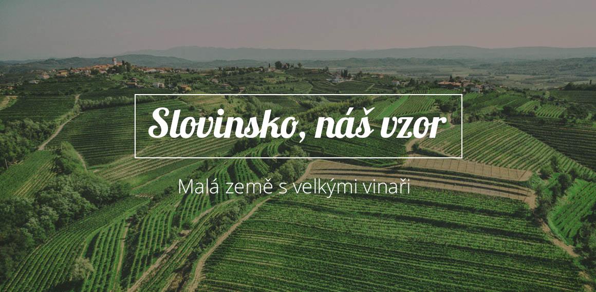 Slovinsko, náš vzor