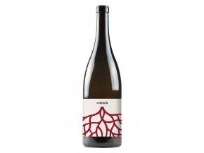 Jakub Novák - Zweigeltrebe + Pinot Noir 2015