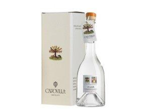 distillato di albicocche del vesuvio capovilla 50cl 6078