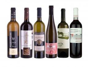 Balíček vín Salonu České republiky 2017, 6x0,75l