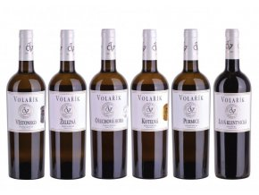 Balení vín Terroir 2019, Volařík, 6x0,75l