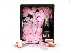 Moët & Chandon Grand Vintage Rosé 2012 v luxusním dárkovém setu, 0,75l