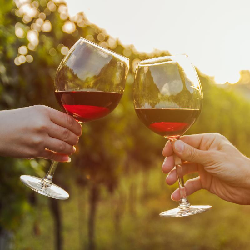 Vína z Bordeaux: Odhalte tajemství francouzských vín
