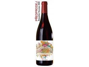 Beaujolais Nouveau 2020 (Paul Sapin) PŘEDPRODEJ wineme