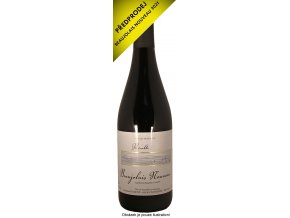 Beaujolais Nouveau 2021 (Domaine Dubost)