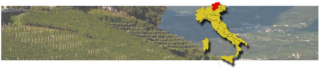 Jižní Tyrolsko /Alto Adige/