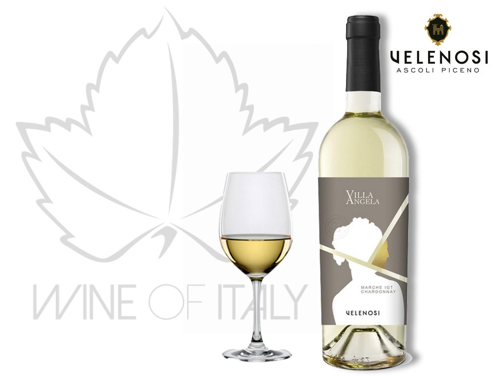 Villa Angela Chardonnay IGT Velenosi Itálie