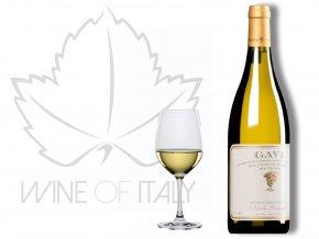 Gavi di Gavi DOCG Nicola Bergaglio - wineofitaly.cz